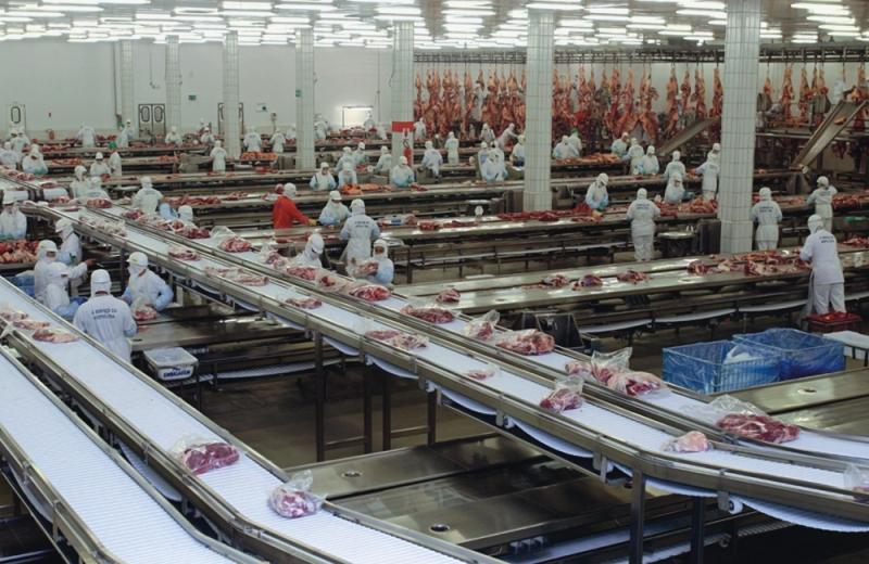 Termostatos Danfoss para Frigoríficos Bom Sucesso de Itararé - Termostato Industrial Danfoss